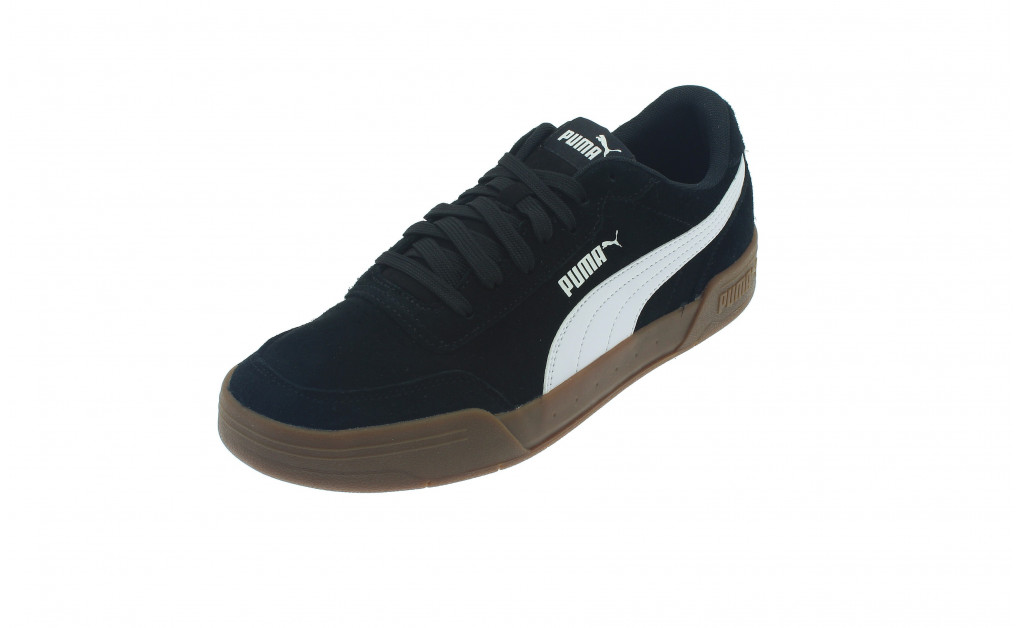 PUMA CARACAL SD IMAGE 1
