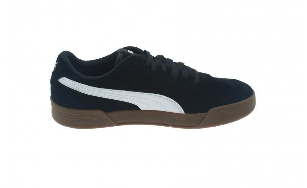 PUMA CARACAL SD IMAGE 8