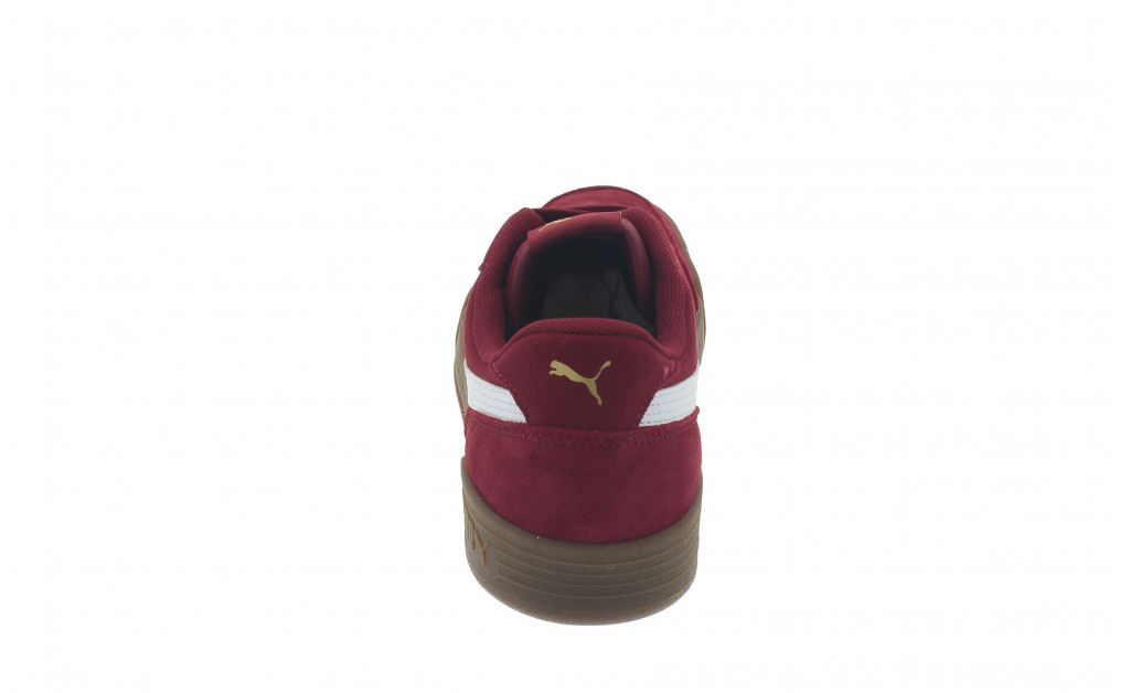 PUMA CARACAL SD IMAGE 2
