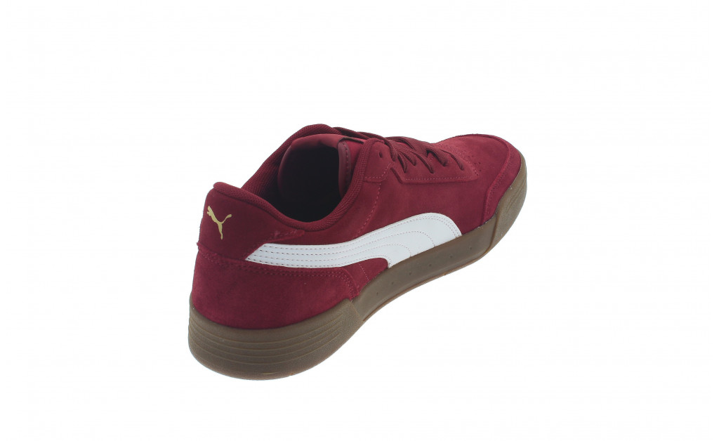 PUMA CARACAL SD IMAGE 3