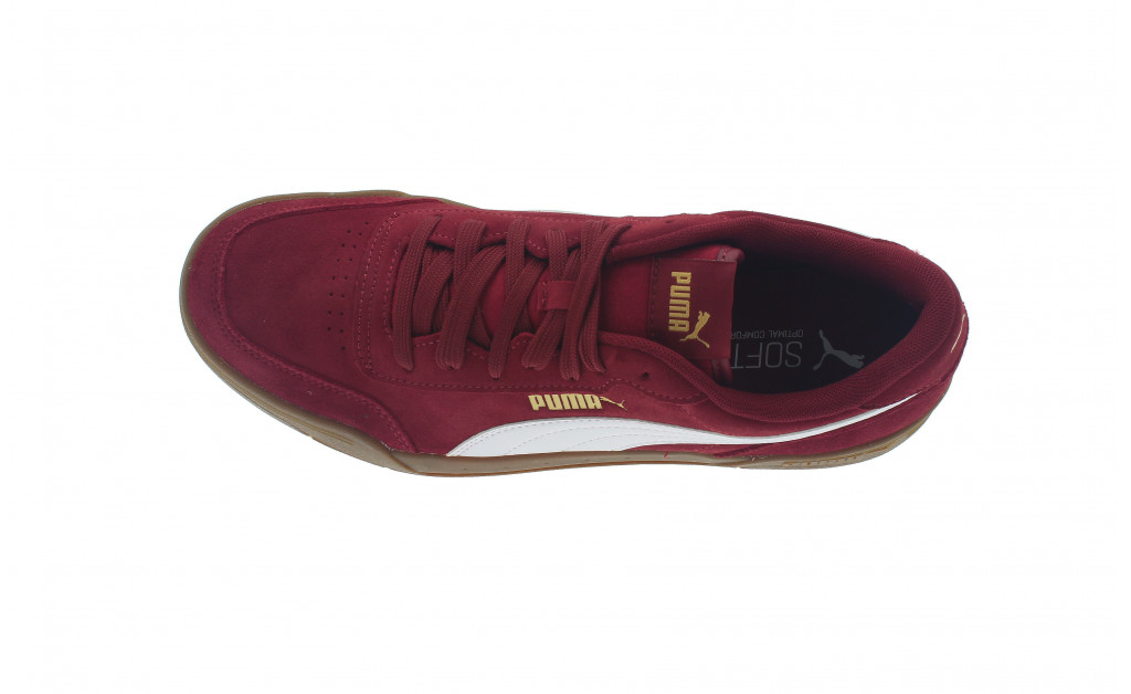 PUMA CARACAL SD IMAGE 5