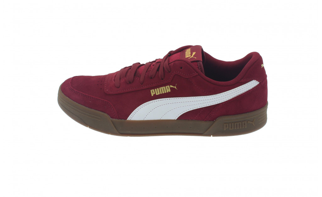 PUMA CARACAL SD IMAGE 7